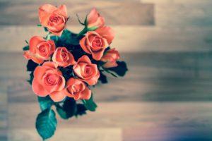 Roses, Fleurs, Bouquet, L'Amour, Nature, Rose