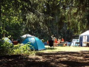 Camp, Forest, Été, Jours Fériés, Groupe, Désert